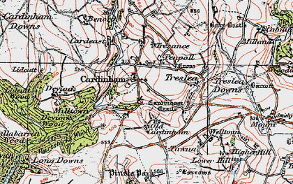 Old map of Cardinham in 1919