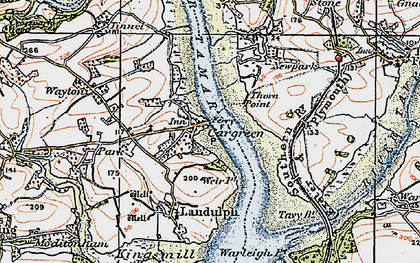 Old map of Cargreen in 1919