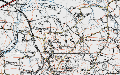 Old map of Carne in 1919