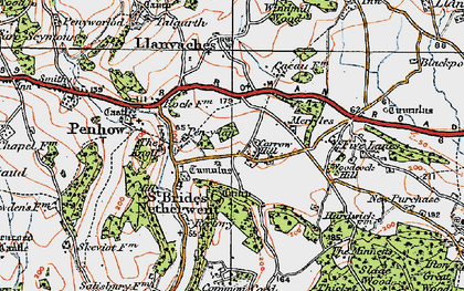 Old map of Carrow Hill in 1919