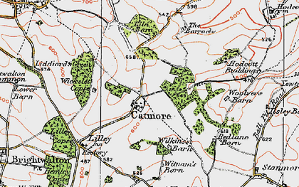 Old map of Wilkins Barne in 1919