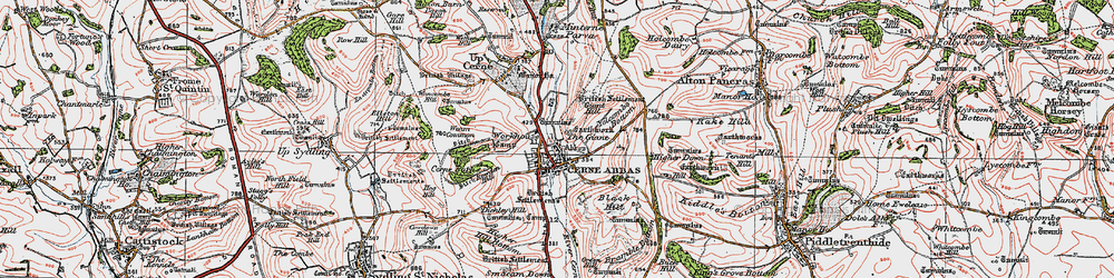 Old map of Yelcombe Bottom in 1919
