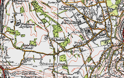 Old map of Alderstead Heath in 1920