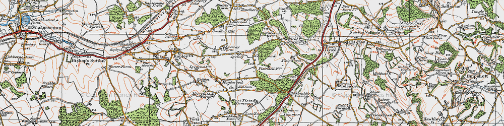 Old map of Winchester Wood in 1919