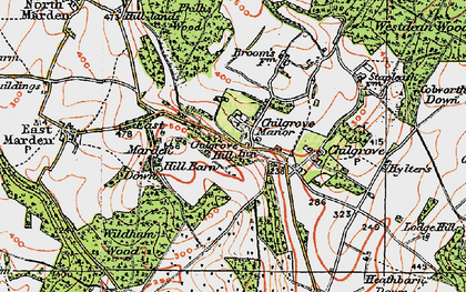 Old map of Westdean Woods in 1919