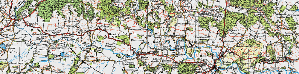 Old map of Chithurst in 1919
