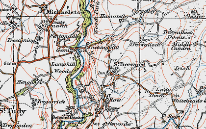 Old map of Alex Tor in 1919