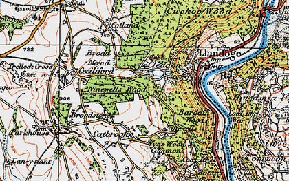 Old map of Bargain Wood in 1919