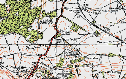 Old map of Clench Common in 1919