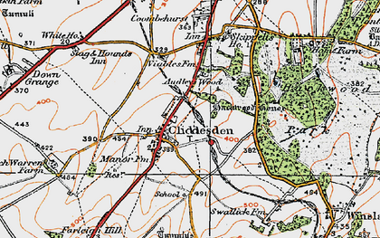 Old map of Audleys Wood in 1919