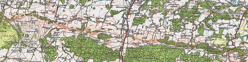 Old map of Cocking in 1919