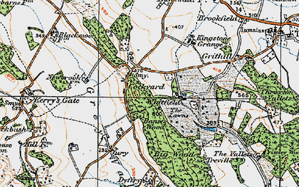 Old map of Banses Wood in 1919