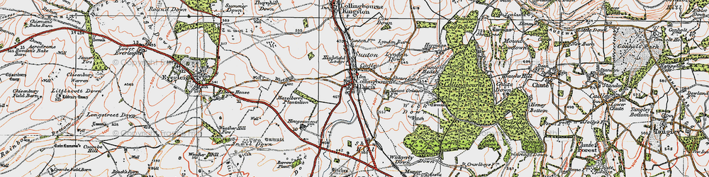 Old map of Windmillhill Down in 1919