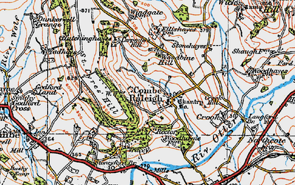 Old map of Combe Raleigh in 1919