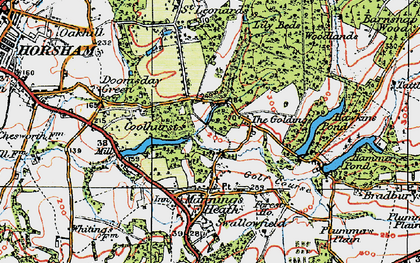 Old map of Lily Beds in 1920