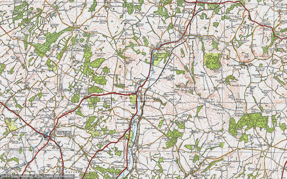 Old Map of Corhampton, 1919 in 1919