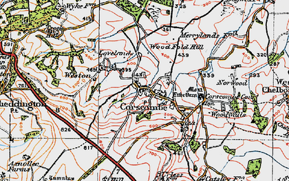 Old map of Woodwalls in 1919