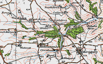 Old map of Austins in 1919