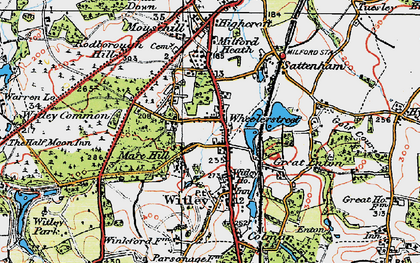 Old map of Witley Common in 1920
