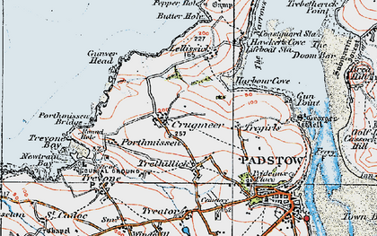 Old map of Lellizzick in 1919