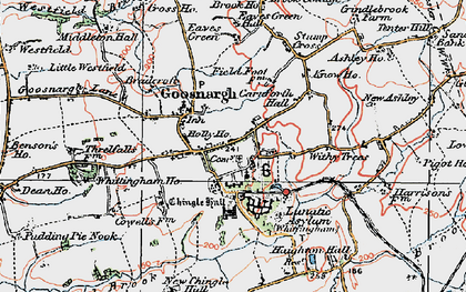 Old map of Withy Trees in 1924