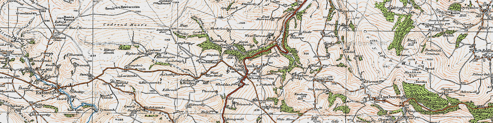 Old map of Cutcombe in 1919