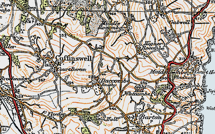 Old map of Daccombe in 1919