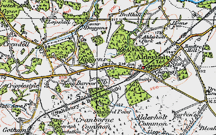 Old map of Alderholt Park in 1919