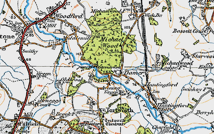 Old map of Damery in 1919