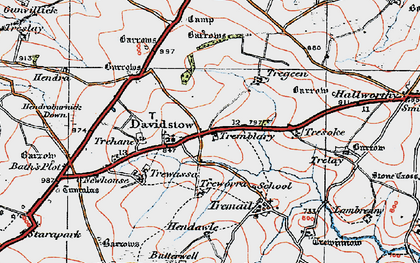 Old map of Davidstow in 1919
