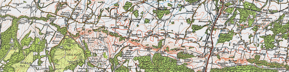 Old map of Linchball Wood in 1919