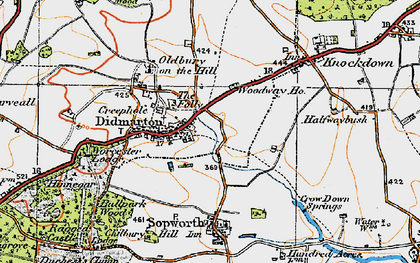 Old map of Didmarton in 1919