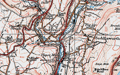 Old map of Lark Hill in 1924