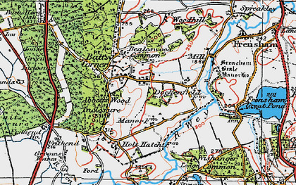 Old map of Abbots Wood Inclosure in 1919