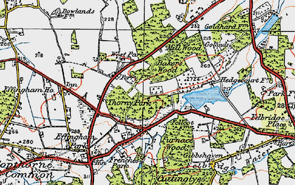 Old map of Baker's Wood in 1920