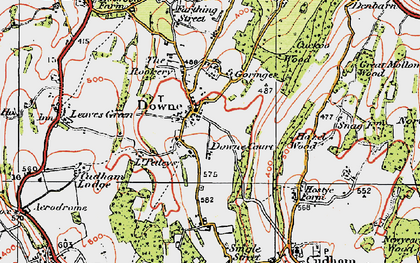 Old map of Downe in 1920