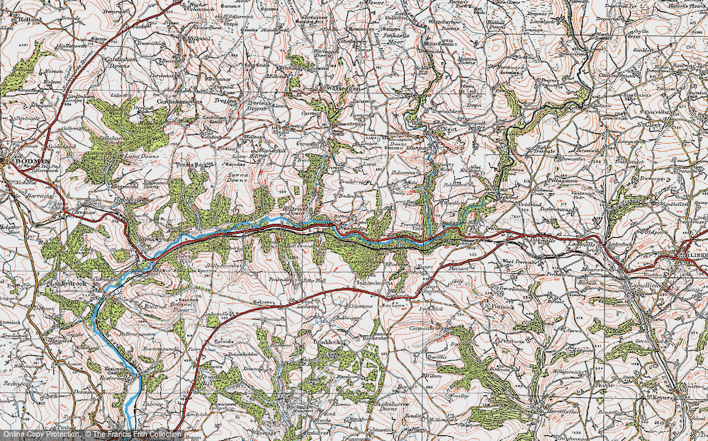 Old Map of Historic Map covering Largin Wood in 1919