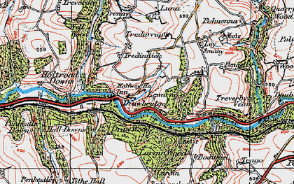 Old map of Largin Wood in 1919