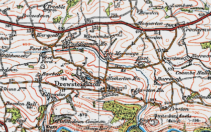 Old map of Whiddon Wood in 1919