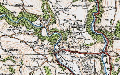 Old map of Dulverton in 1919