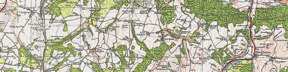 Old map of Wildhams Wood in 1919