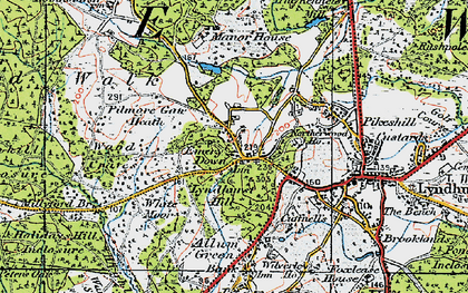 Old map of Emery Down in 1919