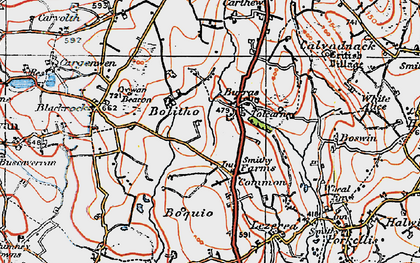 Old map of Farms Common in 1919