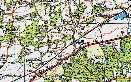 Old map of Faygate in 1920