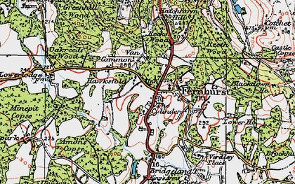 Old map of Fernhurst in 1919