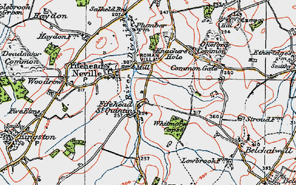 Old map of Whitmore Coppice in 1919