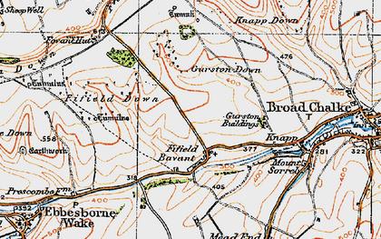 Old map of Fifield Bavant in 1919