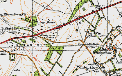 Old map of Firsdown in 1919