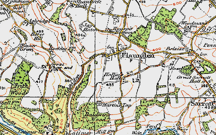 Old map of Baldwin's Wood in 1920