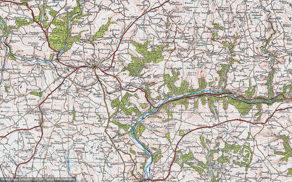 Old Map of Historic Map covering Laneskin Wood in 1919